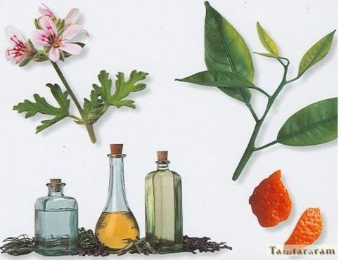 Лечение простуды аромамаслами