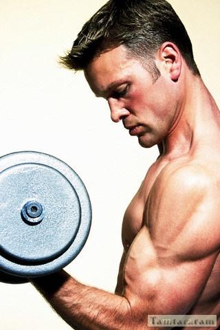 Красивые мышцы накачать
